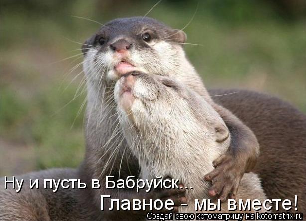 Котоматрица: Главное - мы вместе! Ну и пусть в Бабруйск...