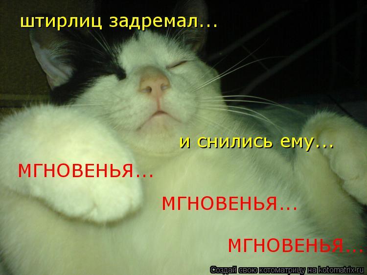 Котоматрица: штирлиц задремал... и снились ему... МГНОВЕНЬЯ... МГНОВЕНЬЯ... МГНОВЕНЬЯ...