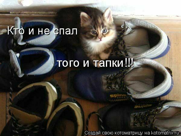 Котоматрица: Кто и не спал того и тапки!!!