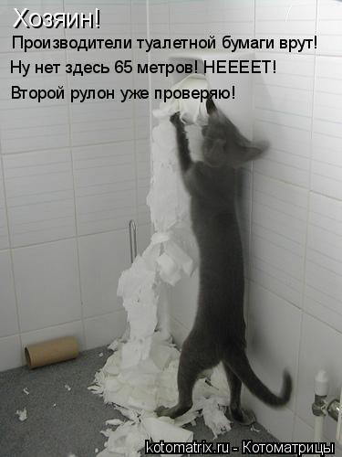 Котоматрица: Хозяин! Производители туалетной бумаги врут! Второй рулон уже проверяю! Ну нет здесь 65 метров! НЕЕЕЕТ!