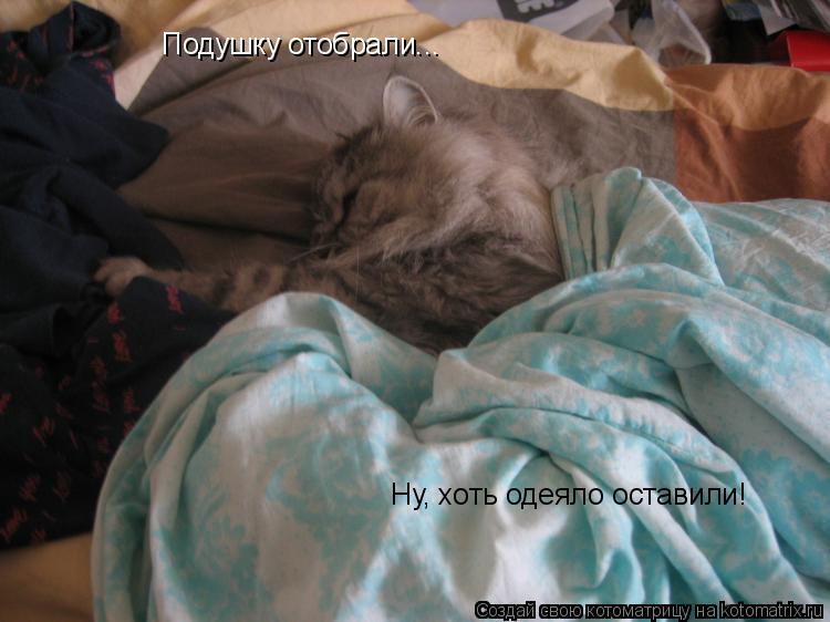 Котоматрица: Подушку отобрали...  Ну, хоть одеяло оставили!