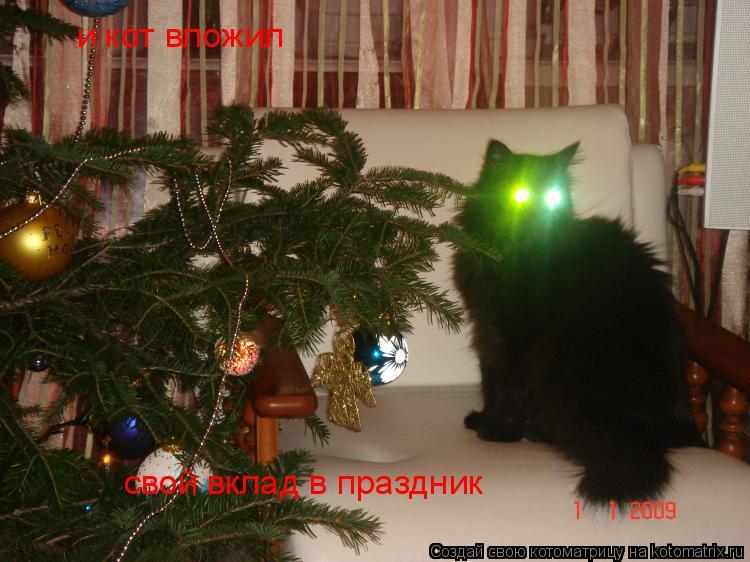 Котоматрица: и кот вложил свой вклад в праздник