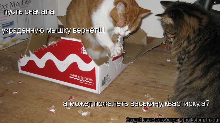 Котоматрица: а может пожалеть васькину квартирку,а? пусть сначала  украденную мышку вернёт!!!