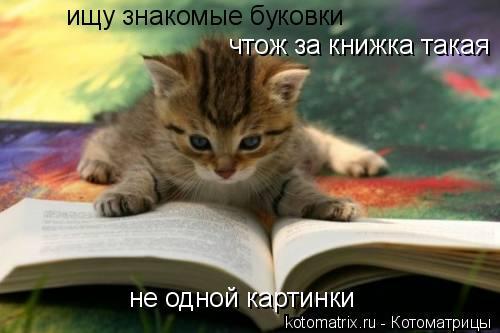 Котоматрица: ищу знакомые буковки чтож за книжка такая не одной картинки