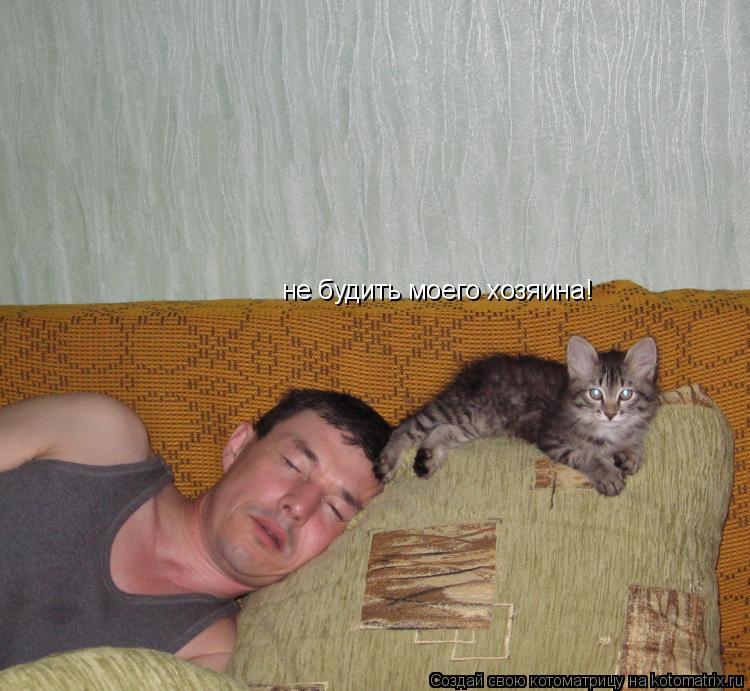 Котоматрица: не будить моего хозяина!
