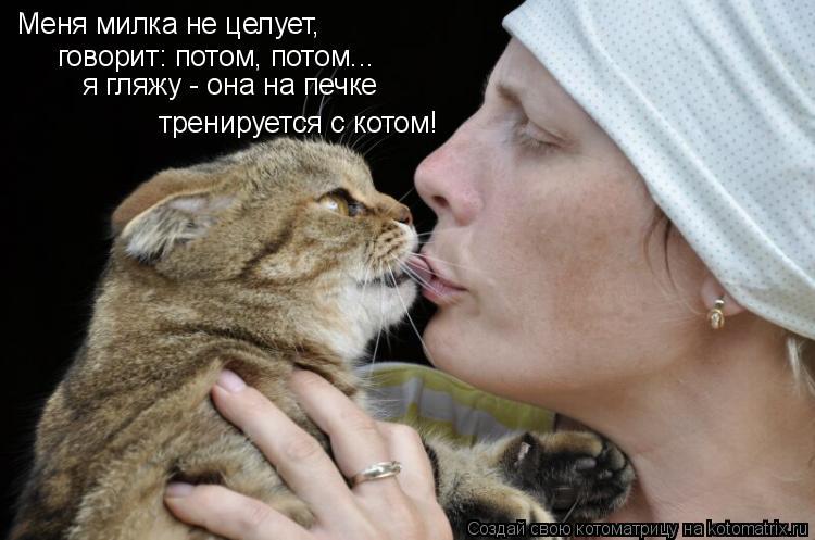 Котоматрица: Меня милка не целует, говорит: потом, потом... тренируется с котом! я гляжу - она на печке