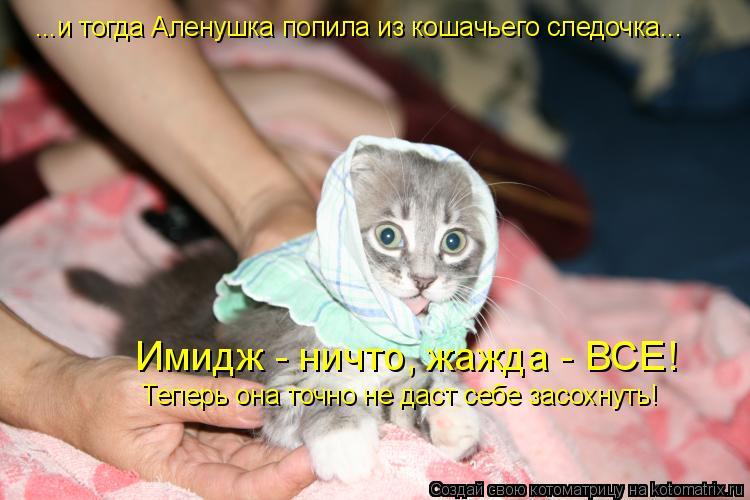 Котоматрица: ...и тогда Аленушка попила из кошачьего следочка... Имидж - ничто, жажда - ВСЕ! Теперь она точно не даст себе засохнуть!