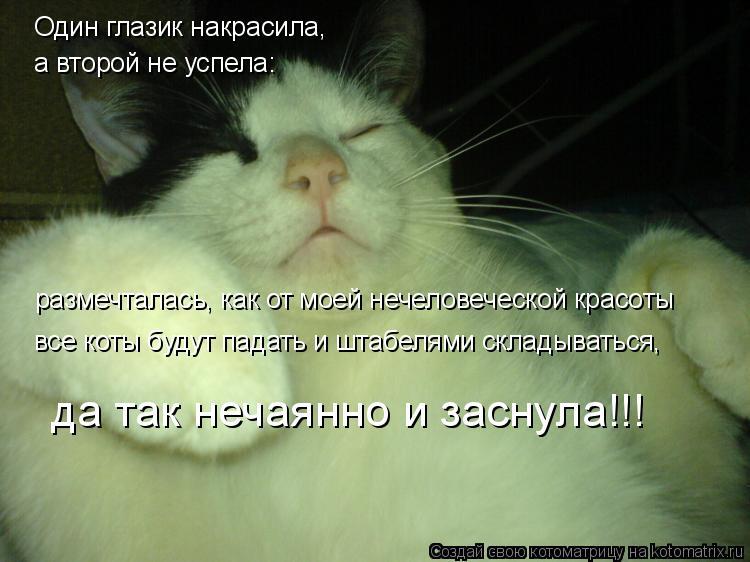 Котоматрица: Один глазик накрасила, а второй не успела: размечталась, как от моей нечеловеческой красоты все коты будут падать и штабелями складываться,