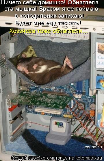 Котоматрица: Ничего себе домишко! Обнаглела эта мышка! Вразом я её поймаю в холодильник запихаю! Будет мне еду таскать! Хоззяева тоже обнаглели...