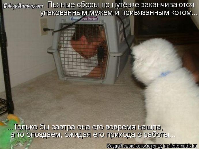 Котоматрица: Пьяные сборы по путёвке заканчиваются упакованным мужем и привязанным котом... ...Только бы завтра она его вовремя нашла, а то опоздаем, ожид