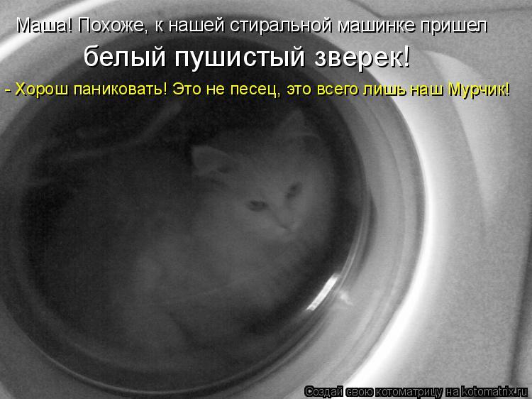 Котоматрица: Маша! Похоже, к нашей стиральной машинке пришел белый пушистый зверек! - Хорош паниковать! Это не песец, это всего лишь наш Мурчик!