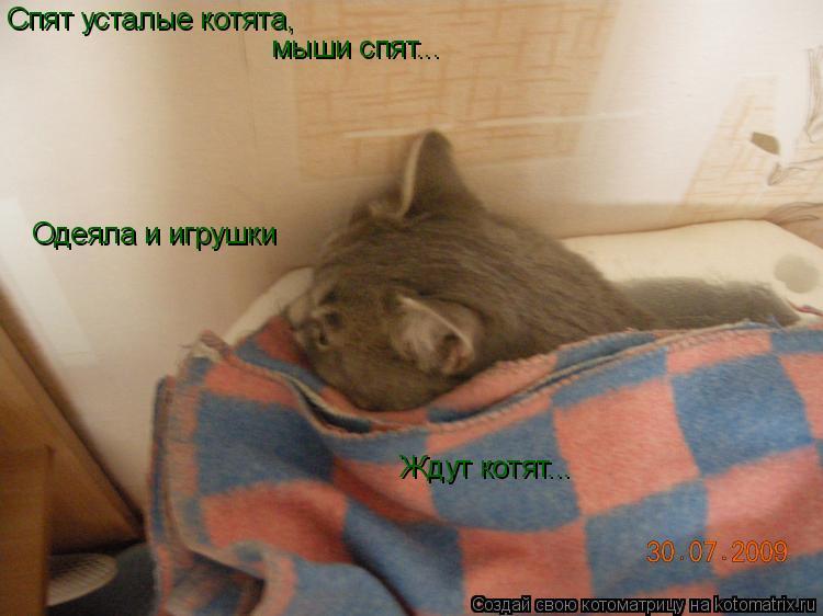 Котоматрица: Спят усталые котята, мыши спят... Одеяла и игрушки Ждут котят...