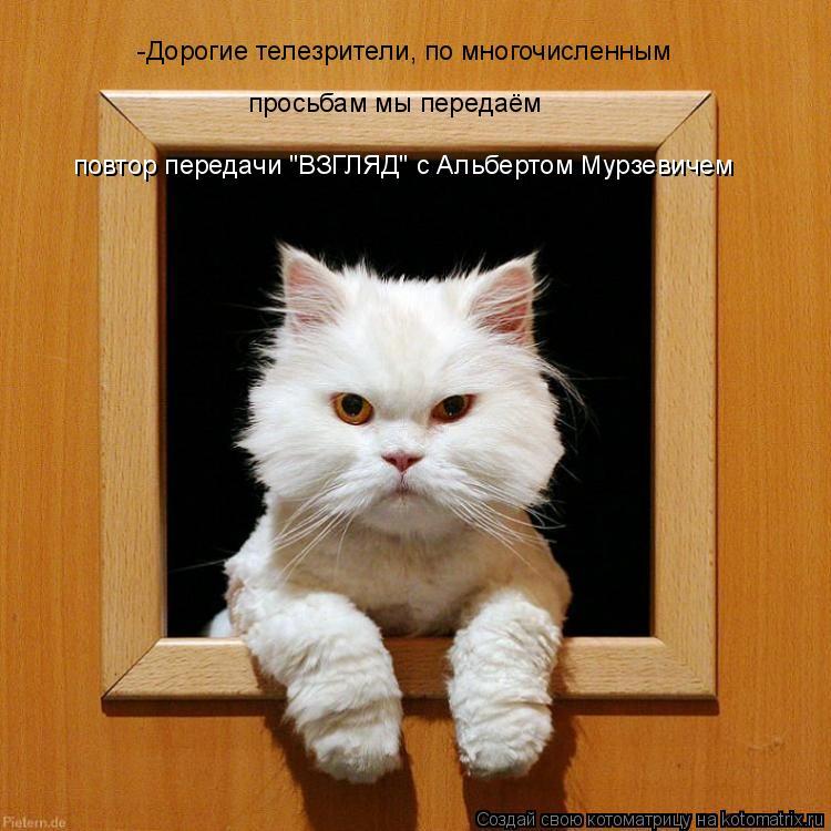 """Котоматрица: -Дорогие телезрители, по многочисленным  просьбам мы передаём повтор передачи """"ВЗГЛЯД"""" с Альбертом Мурзевичем"""