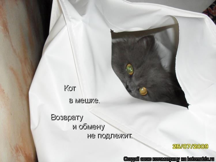 Котоматрица: Кот  в мешке. Возврату и обмену не подлежит.