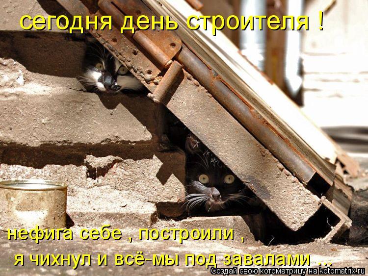 Котоматрица: сегодня день строителя ! нефига себе , построили , я чихнул и всё-мы под завалами ...