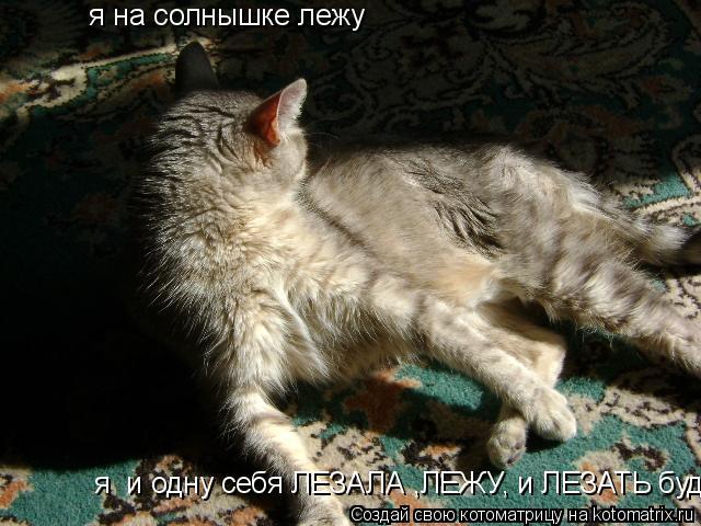 Котоматрица: я на солнышке лежу       я  и одну себя ЛЕЗАЛА ,ЛЕЖУ, и ЛЕЗАТЬ буду