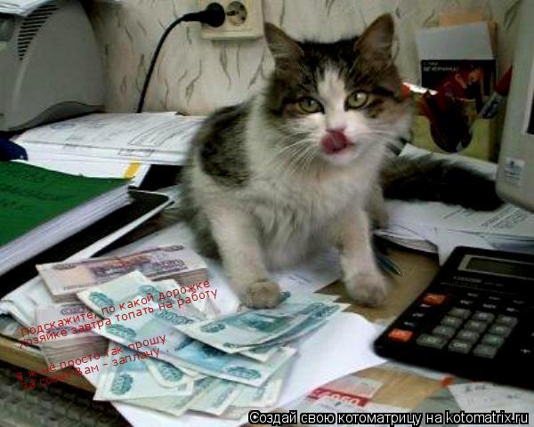 Котоматрица: Подскажите, по какой дорожке Хозяйке завтра топать на работу Я ж не просто так прошу За совет Вам - заплачу . . .