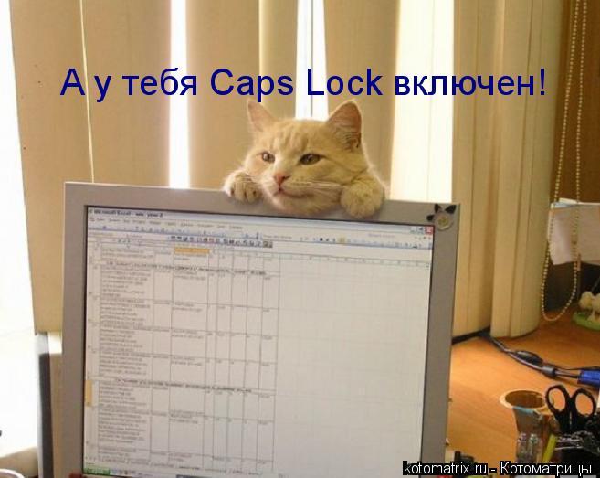 Котоматрица: А у тебя Caps Lock включен!