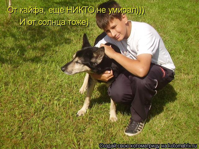 Котоматрица: От кайфа, ещё НИКТО не умирал))) И от солнца тоже)