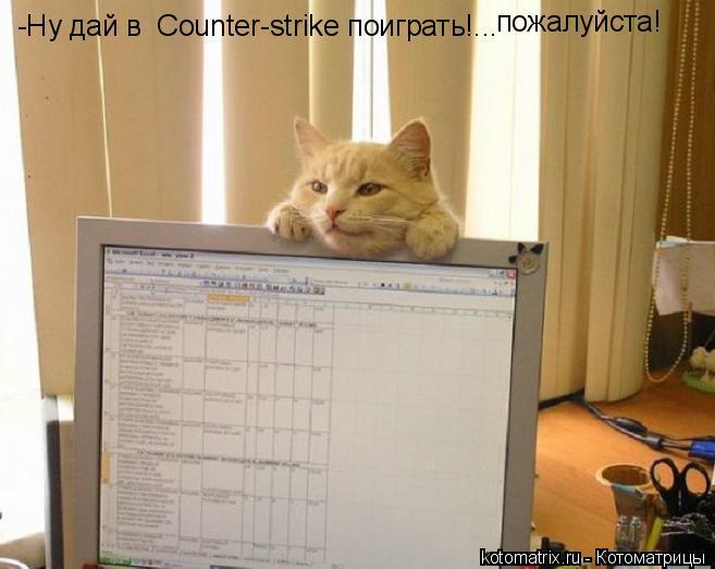 Котоматрица: -Ну дай в  Counter-strike поиграть!... пожалуйста!