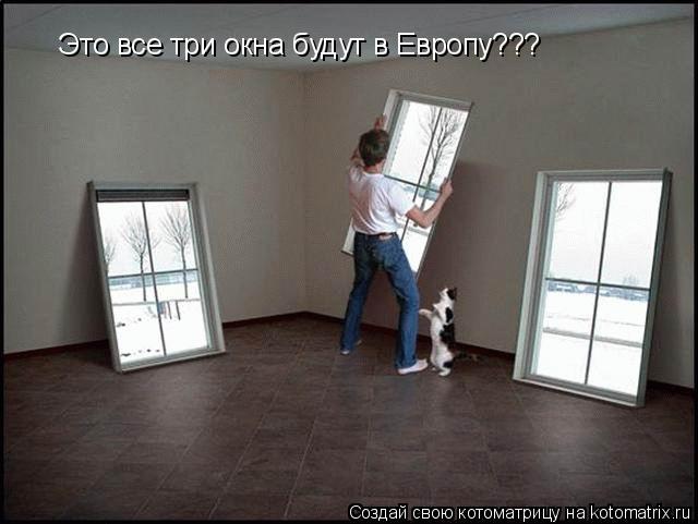 Котоматрица: Это все три окна будут в Европу???
