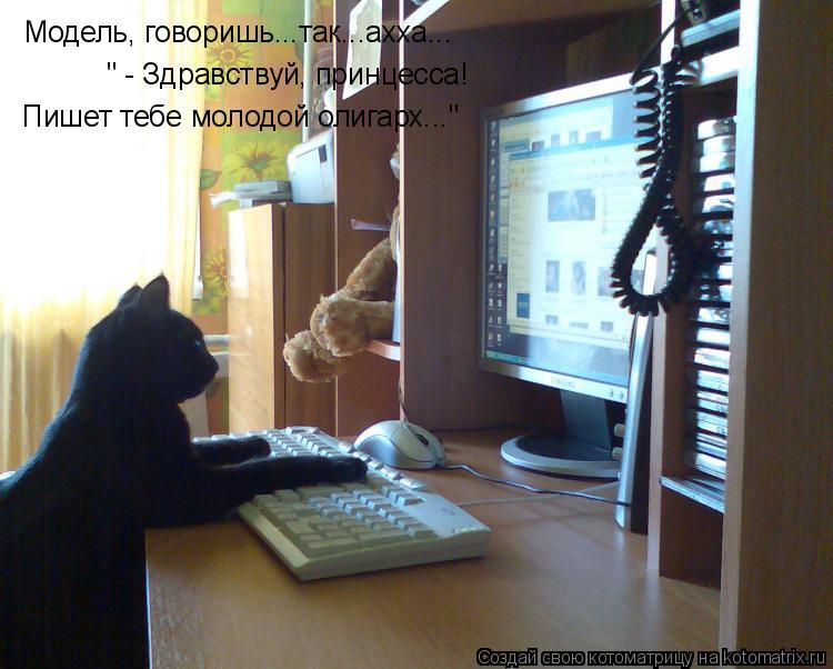 """Котоматрица: Модель, говоришь...так...ахха... """" - Здравствуй, принцесса!  Пишет тебе молодой олигарх..."""""""
