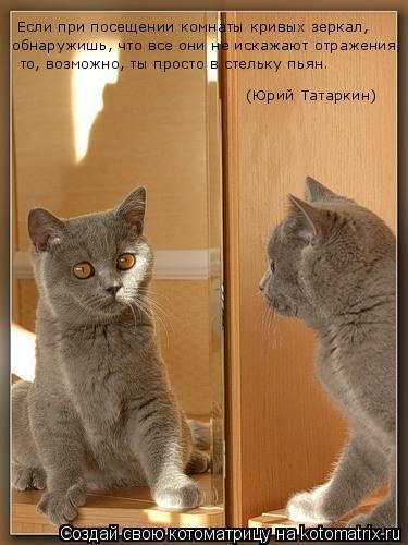 Котоматрица: Если при посещении комнаты кривых зеркал,  обнаружишь, что все они не искажают отражения, то, возможно, ты просто в стельку пьян.  (Юрий Татар