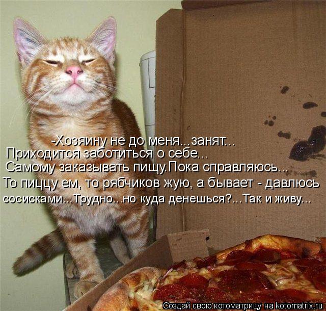 Котоматрица: -Хозяину не до меня...занят... Самому заказывать пищу.Пока справляюсь... То пиццу ем, то рябчиков жую, а бывает - давлюсь Приходится заботиться