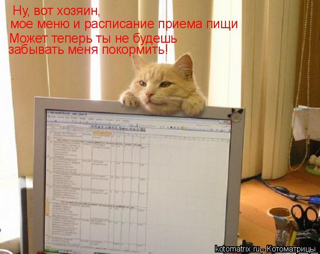Котоматрица: Ну, вот хозяин, мое меню и расписание приема пищи Может теперь ты не будешь  забывать меня покормить!