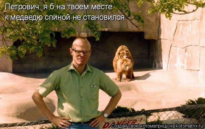 Котоматрица: Петрович, я б на твоем месте к медведю спиной не становился