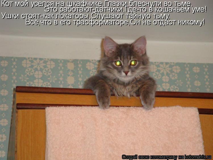 Котоматрица: Кот мой уселся на шкафчике,Глазки блеснули во тьме, Это работают-датчики,Где-то в кошачьем уме! Ушки стоят-как локаторы,Слушают тайную тьму,