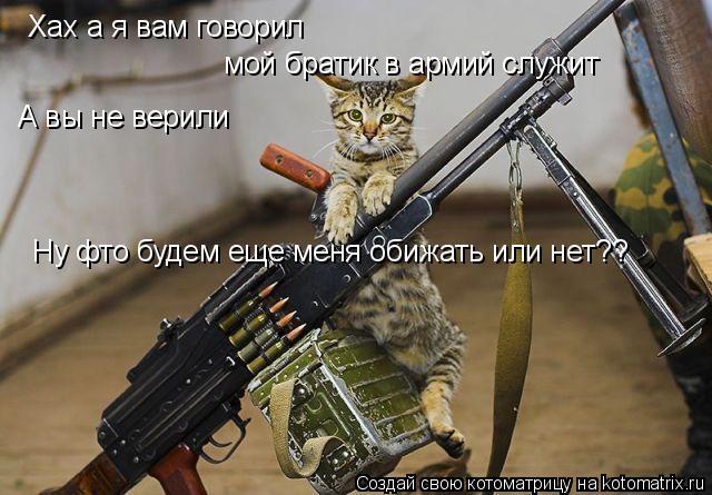 Котоматрица: Хах а я вам говорил мой братик в армий служит А вы не верили Ну фто будем еще меня обижать или нет??