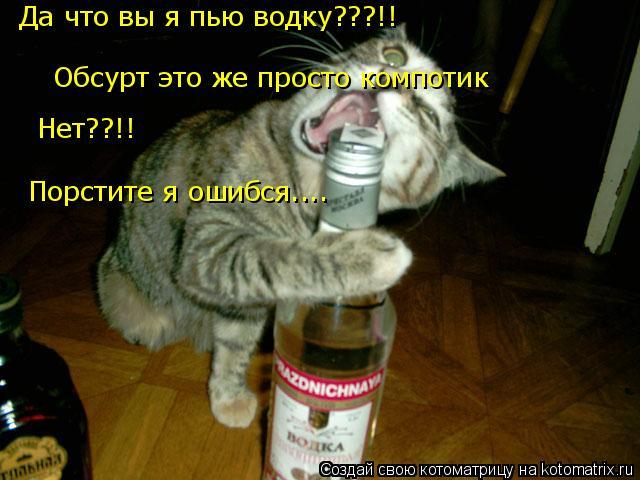 Котоматрица: Да что вы я пью водку???!! Обсурт это же просто компотик  Нет??!! Порстите я ошибся....