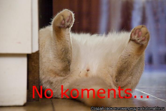 Котоматрица: No koments...