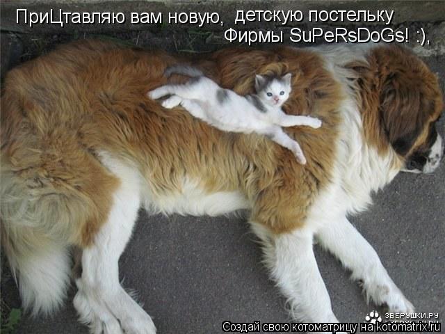Котоматрица: ПриЦтавляю вам новую,  детскую постельку Фирмы SuPeRsDoGs! :),