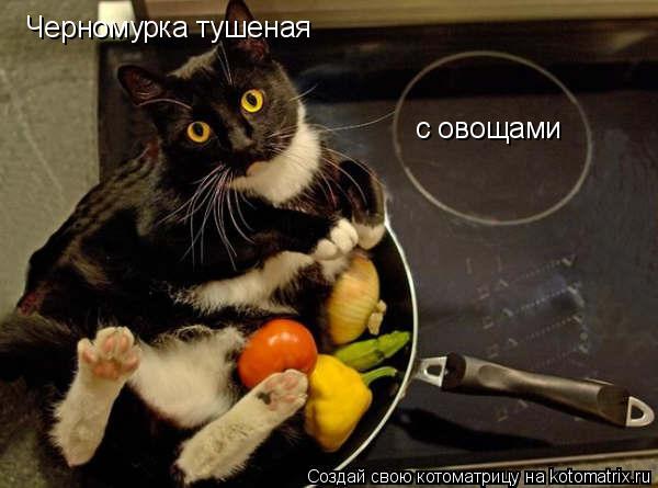 Котоматрица: Черномурка тушеная  с овощами