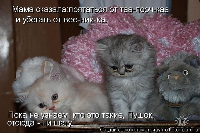 Котоматрица: Мама сказала:прятаться от таа-пооч-каа и убегать от вее-нии-ка. Пока не узнаем, кто это такие, Пушок, отсюда - ни шагу!