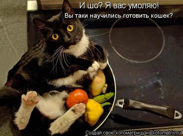 Котоматрица: Вы таки научились готовить кошек? И шо? Я вас умоляю!