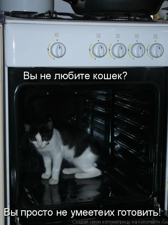 Котоматрица: Вы не любите кошек? Вы просто не умеетеих готовить! Вы просто не умеетеих готовить!