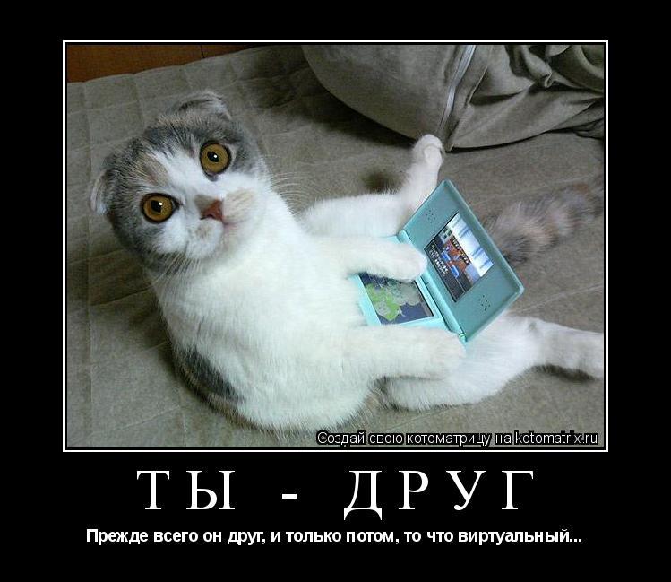 Котоматрица: ТЫ - ДРУГ Прежде всего он друг, и только потом, то что виртуальный...