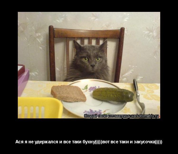 Котоматрица: Обана еда!!! Ася я не удержался и все таки бухну)))))вот все таки и закусочка)))))