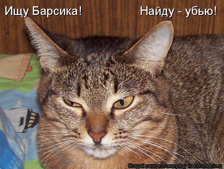 Котоматрица: Ищу Барсика! Найду - убью!