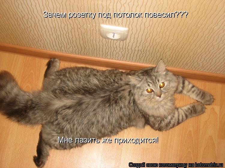 Котоматрица: Зачем розетку под потолок повесил??? Мне лазить же приходится!