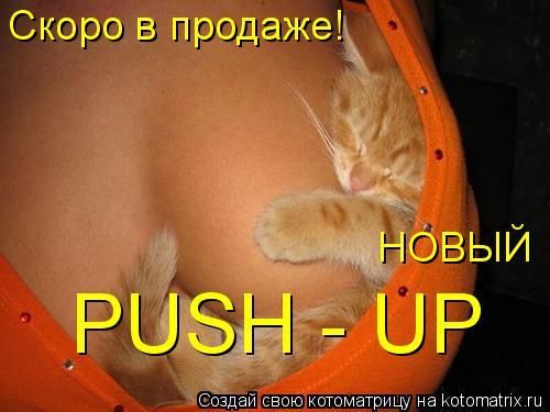 Котоматрица: PUSH - UP Скоро в продаже! НОВЫЙ