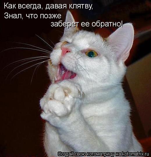 Котоматрица: Как всегда, давая клятву, Знал, что позже заберет ее обратно!