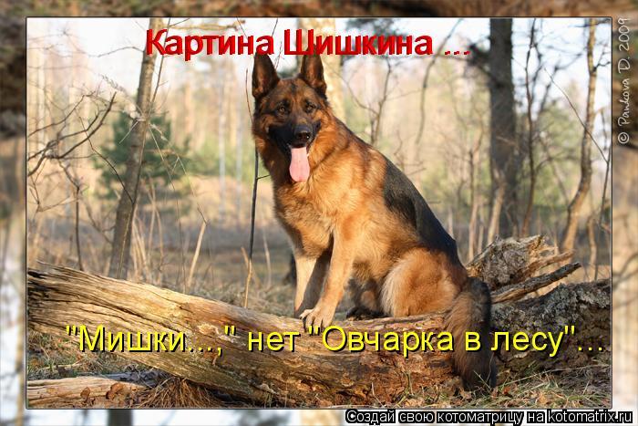 "Котоматрица: Картина Шишкина ... Картина Шишкина ... ""Мишки...,"" нет ""Овчарка в лесу""..."