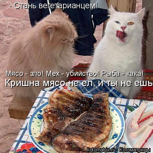 Котоматрица: - Стань вегетарианцем! Мясо - зло! Мех - убийство! Рыба - кака!  Кришна мясо не ел, и ты не ешь!