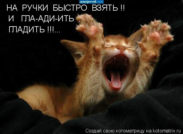 http://kotomatrix.ru/images/lolz/2009/08/11/338521.jpg