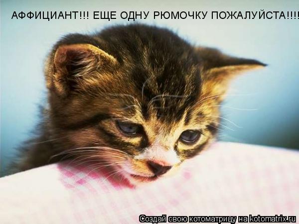 Котоматрица: АФФИЦИАНТ!!! ЕЩЕ ОДНУ РЮМОЧКУ ПОЖАЛУЙСТА!!!!