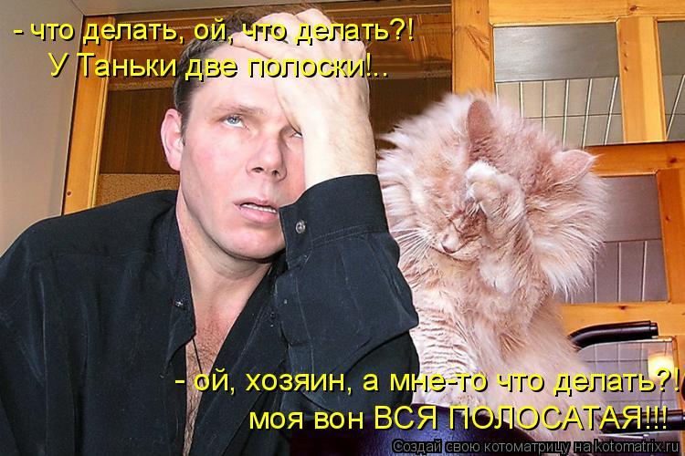 Котоматрица: - что делать, ой, что делать?! У Таньки две полоски!.. - ой, хозяин, а мне-то что делать?! моя вон ВСЯ ПОЛОСАТАЯ!!!